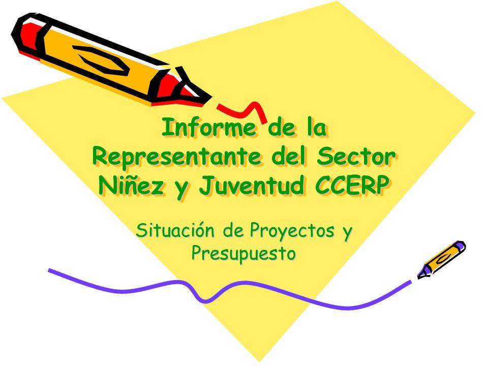Informe de la Representante del Sector Niñez y Juventud CCERP Situación de Proyectos y Presupuesto