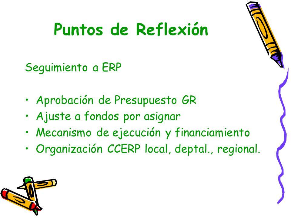 Puntos de Reflexión Seguimiento a ERP Aprobación de Presupuesto GR Ajuste a fondos por asignar Mecanismo de ejecución y financiamiento Organización CC