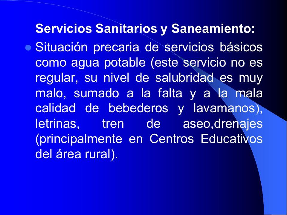 Servicios Sanitarios y Saneamiento: Situación precaria de servicios básicos como agua potable (este servicio no es regular, su nivel de salubridad es