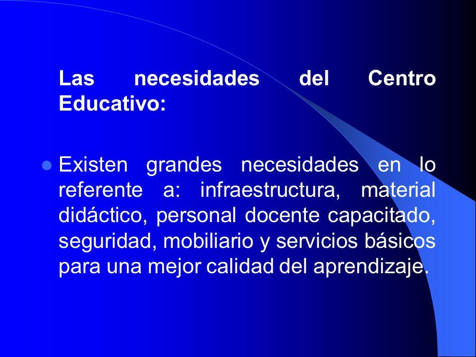 Las necesidades del Centro Educativo: Existen grandes necesidades en lo referente a: infraestructura, material didáctico, personal docente capacitado,