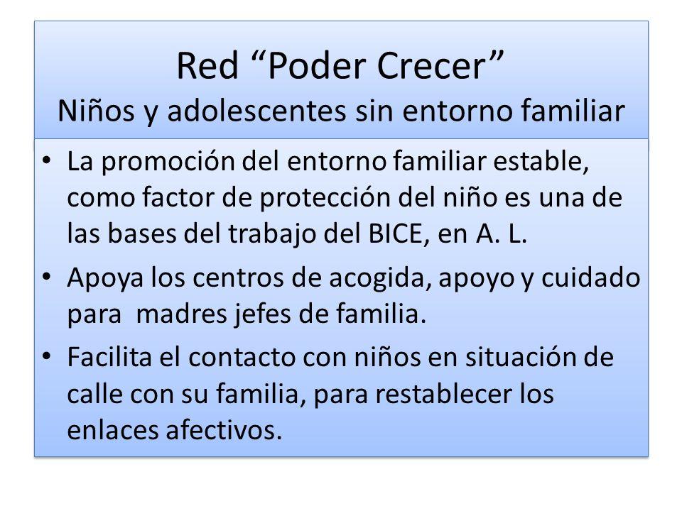 Red Poder Crecer Niños y adolescentes sin entorno familiar La promoción del entorno familiar estable, como factor de protección del niño es una de las bases del trabajo del BICE, en A.