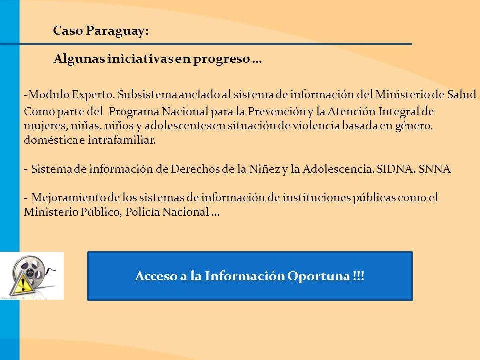 Caso Paraguay: Algunas iniciativas en progreso … -Modulo Experto.