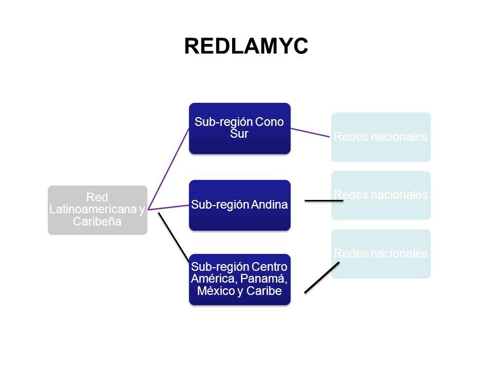 REDLAMYC Red Latinoamericana y Caribeña Sub-región Cono Sur Redes nacionales Sub-región AndinaRedes nacionales Sub-región Centro América, Panamá, Méxi