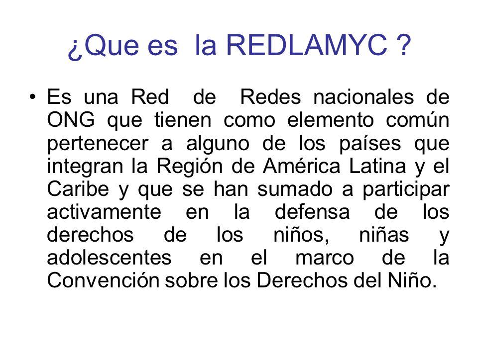 ¿Que es la REDLAMYC ? Es una Red de Redes nacionales de ONG que tienen como elemento común pertenecer a alguno de los países que integran la Región de