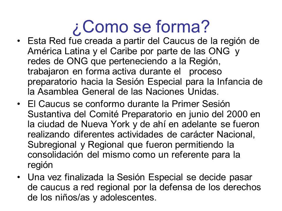 ¿Como se forma? Esta Red fue creada a partir del Caucus de la región de América Latina y el Caribe por parte de las ONG y redes de ONG que pertenecien