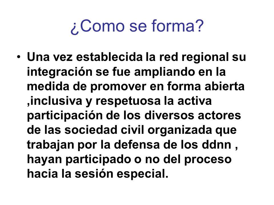 ¿Como se forma? Una vez establecida la red regional su integración se fue ampliando en la medida de promover en forma abierta,inclusiva y respetuosa l