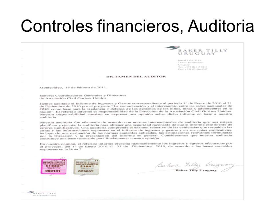 Controles financieros, Auditoria