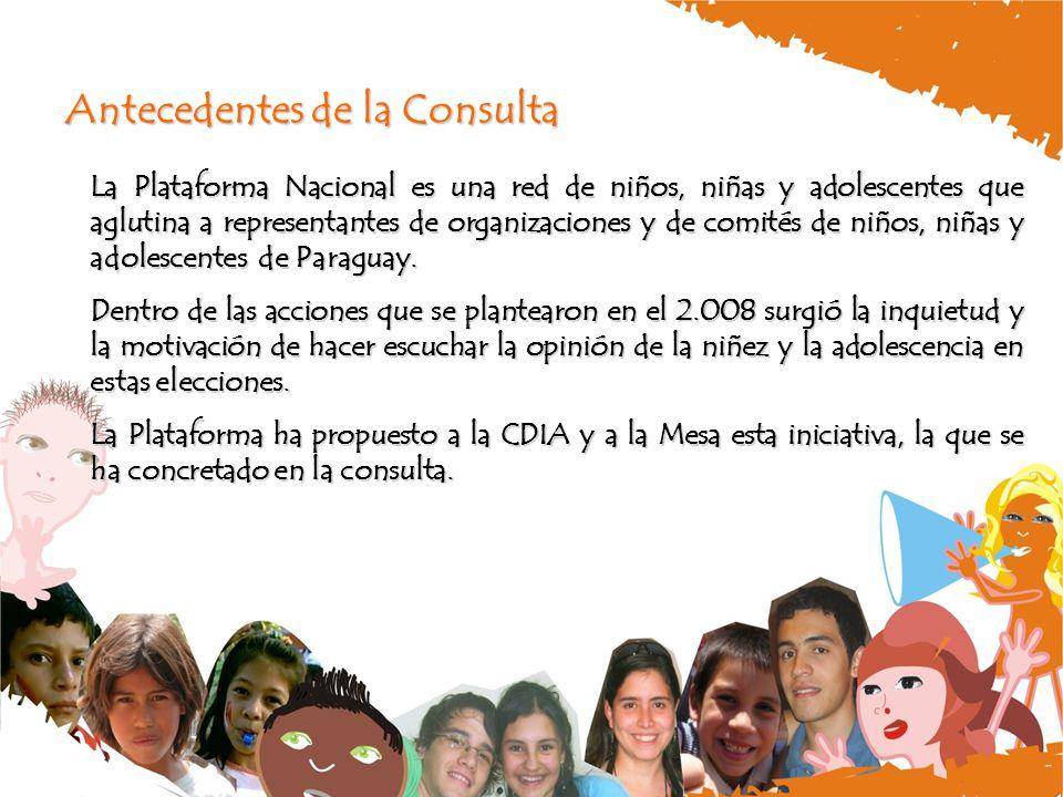 Antecedentes de la Consulta La Plataforma Nacional es una red de niños, niñas y adolescentes que aglutina a representantes de organizaciones y de comités de niños, niñas y adolescentes de Paraguay.