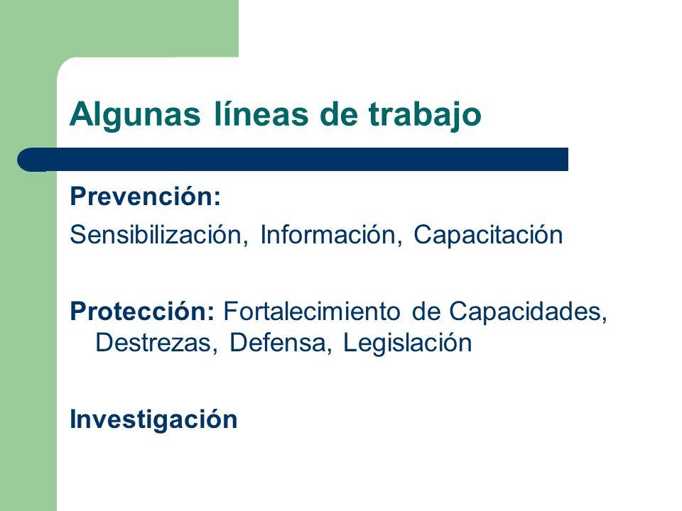 Algunas líneas de trabajo Prevención: Sensibilización, Información, Capacitación Protección: Fortalecimiento de Capacidades, Destrezas, Defensa, Legis