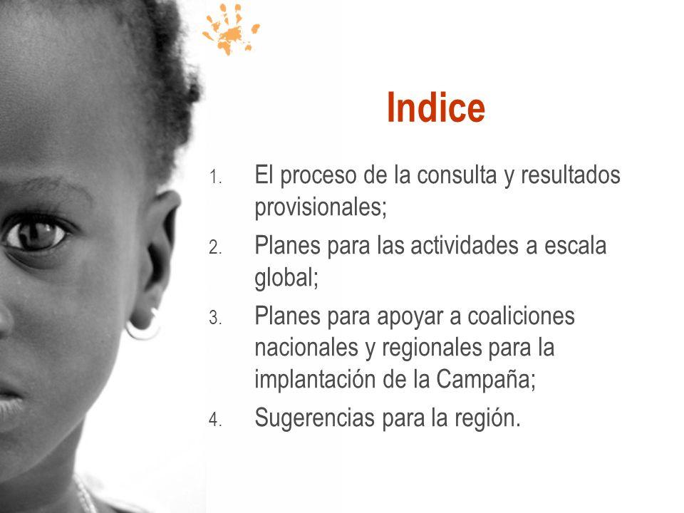 Indice 1. El proceso de la consulta y resultados provisionales; 2. Planes para las actividades a escala global; 3. Planes para apoyar a coaliciones na