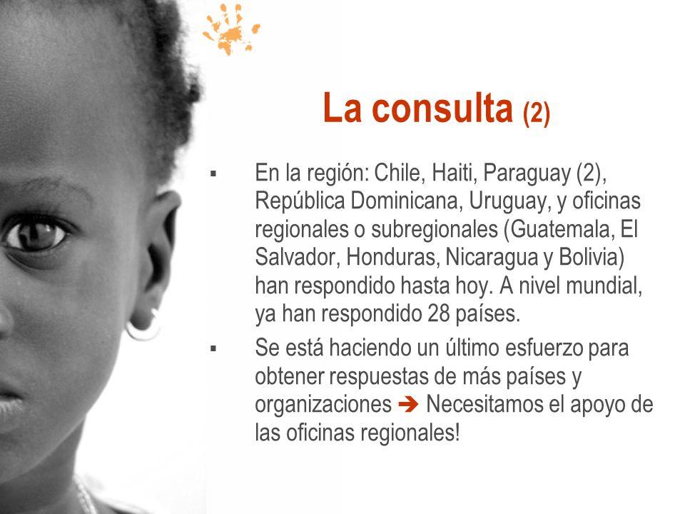 La consulta (2) En la región: Chile, Haiti, Paraguay (2), República Dominicana, Uruguay, y oficinas regionales o subregionales (Guatemala, El Salvador