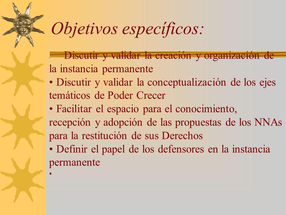 Objetivos específicos: Discutir y validar la creación y organización de la instancia permanente Discutir y validar la conceptualización de los ejes te