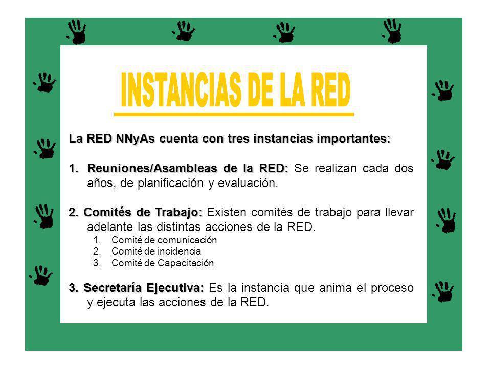 La RED NNyAs cuenta con tres instancias importantes: 1.Reuniones/Asambleas de la RED: 1.Reuniones/Asambleas de la RED: Se realizan cada dos años, de p