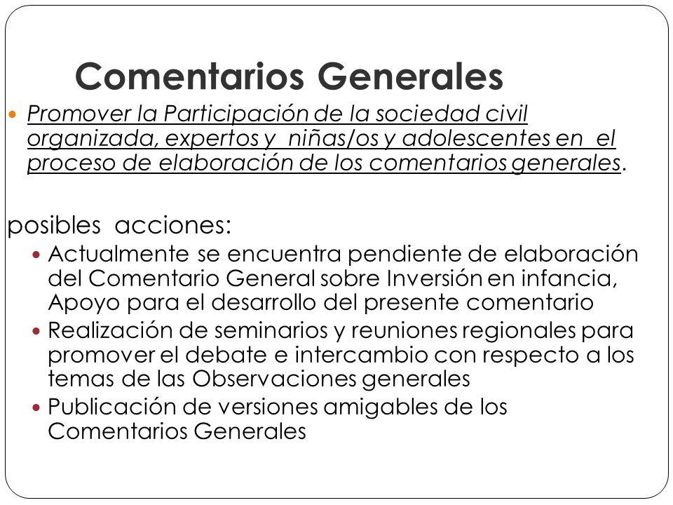 Comentarios Generales Promover la Participación de la sociedad civil organizada, expertos y niñas/os y adolescentes en el proceso de elaboración de los comentarios generales.