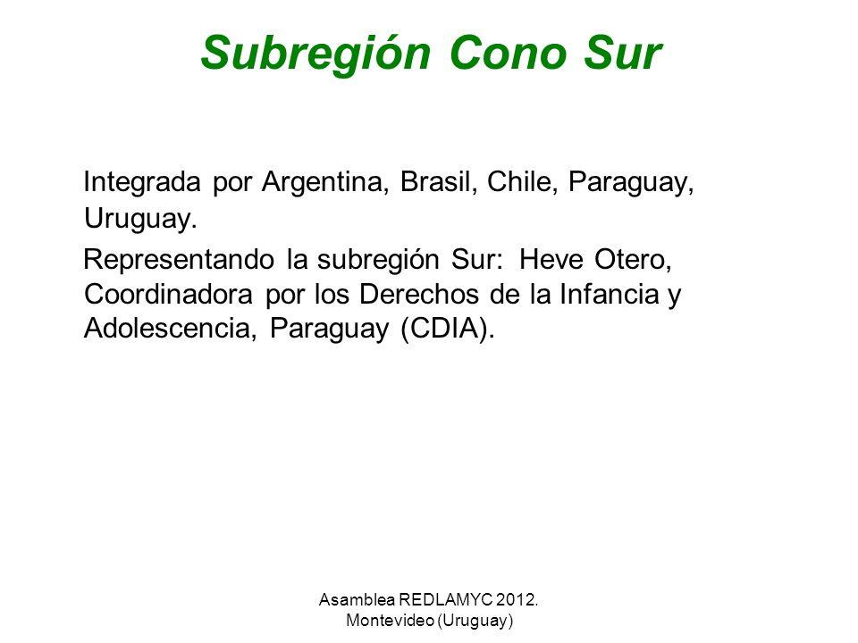 Subregión Cono Sur Integrada por Argentina, Brasil, Chile, Paraguay, Uruguay. Representando la subregión Sur: Heve Otero, Coordinadora por los Derecho