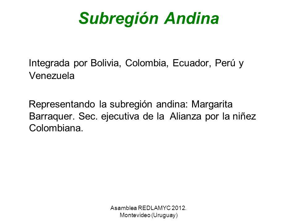 Subregión Andina Integrada por Bolivia, Colombia, Ecuador, Perú y Venezuela Representando la subregión andina: Margarita Barraquer. Sec. ejecutiva de