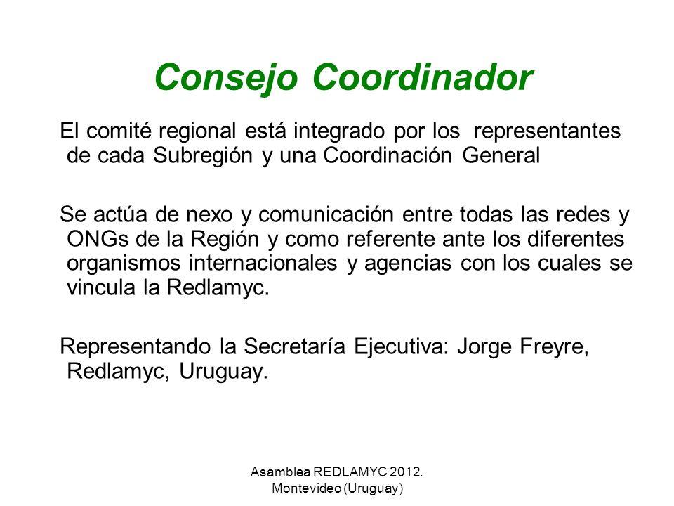 Consejo Coordinador El comité regional está integrado por los representantes de cada Subregión y una Coordinación General Se actúa de nexo y comunicac