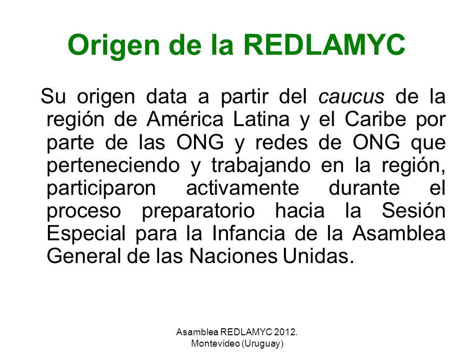 Origen de la REDLAMYC Su origen data a partir del caucus de la región de América Latina y el Caribe por parte de las ONG y redes de ONG que pertenecie