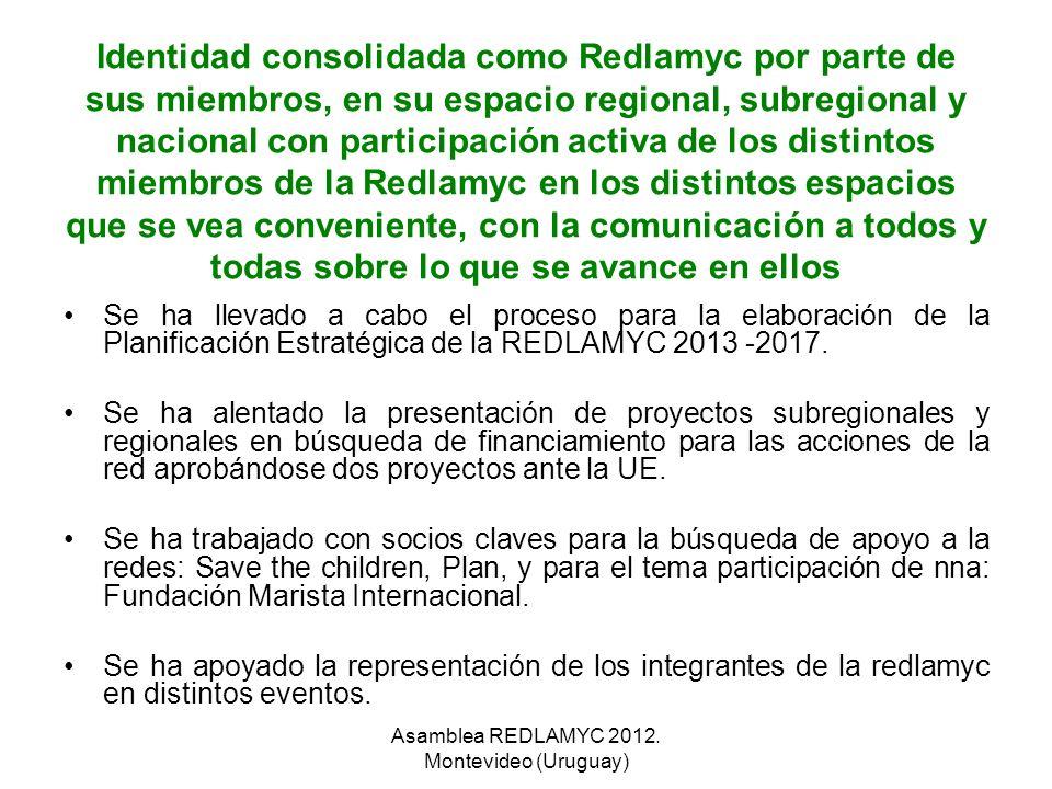 Identidad consolidada como Redlamyc por parte de sus miembros, en su espacio regional, subregional y nacional con participación activa de los distinto