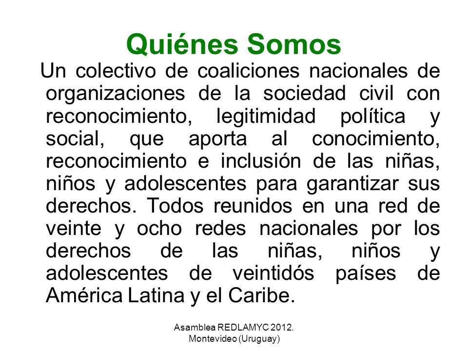Quiénes Somos Un colectivo de coaliciones nacionales de organizaciones de la sociedad civil con reconocimiento, legitimidad política y social, que apo