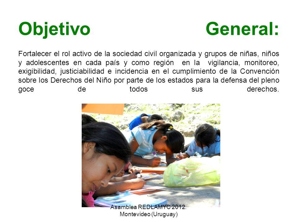 Objetivo General: Fortalecer el rol activo de la sociedad civil organizada y grupos de niñas, niños y adolescentes en cada país y como región en la vi