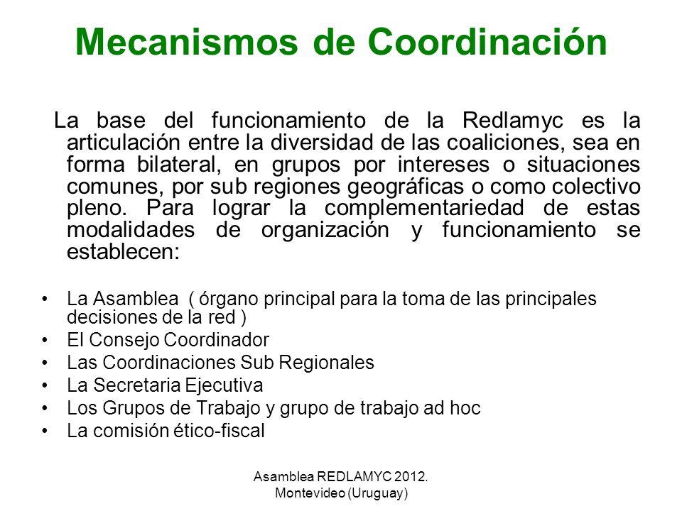 Mecanismos de Coordinación La base del funcionamiento de la Redlamyc es la articulación entre la diversidad de las coaliciones, sea en forma bilateral
