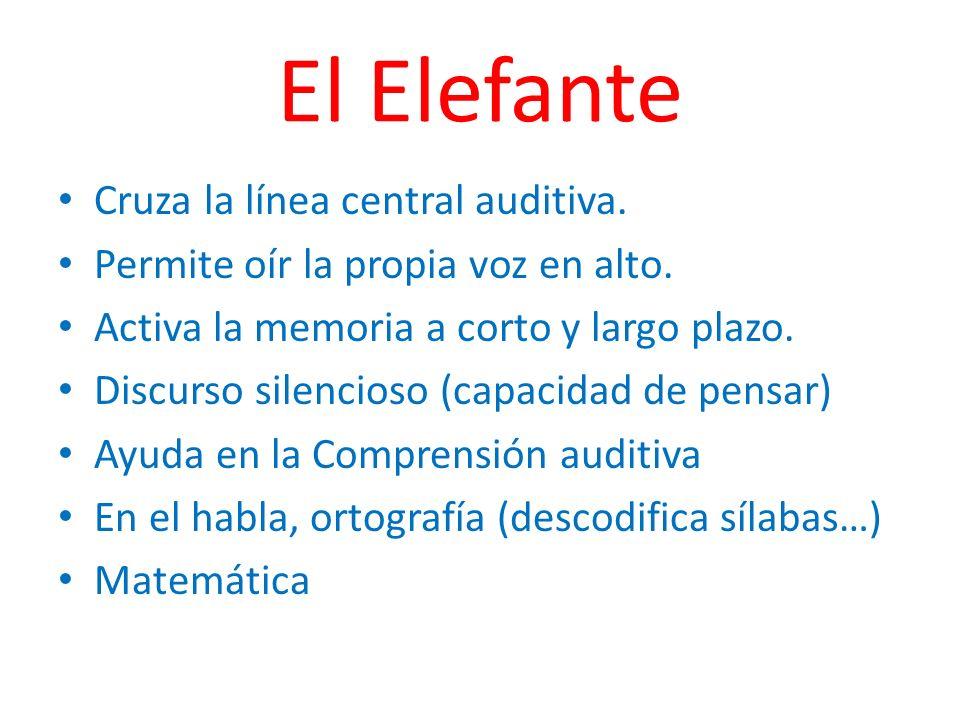 El Elefante Cruza la línea central auditiva. Permite oír la propia voz en alto. Activa la memoria a corto y largo plazo. Discurso silencioso (capacida