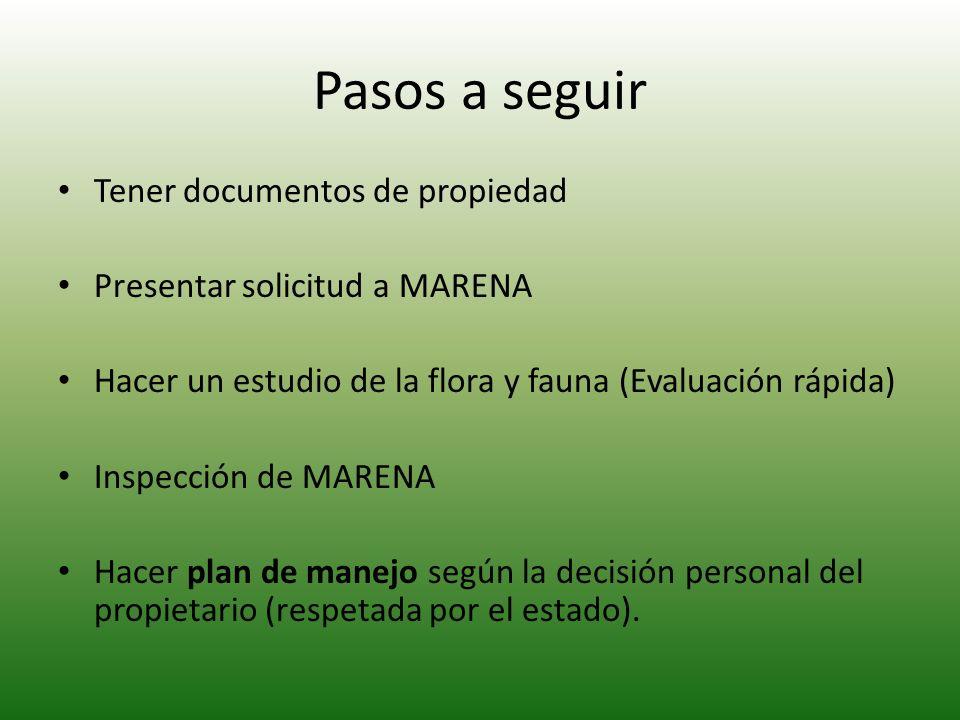 Pasos a seguir Tener documentos de propiedad Presentar solicitud a MARENA Hacer un estudio de la flora y fauna (Evaluación rápida) Inspección de MAREN