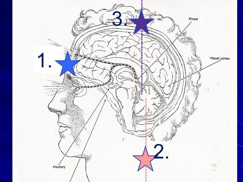 Beneficios de la Geometría Sagrada en la educación 1.