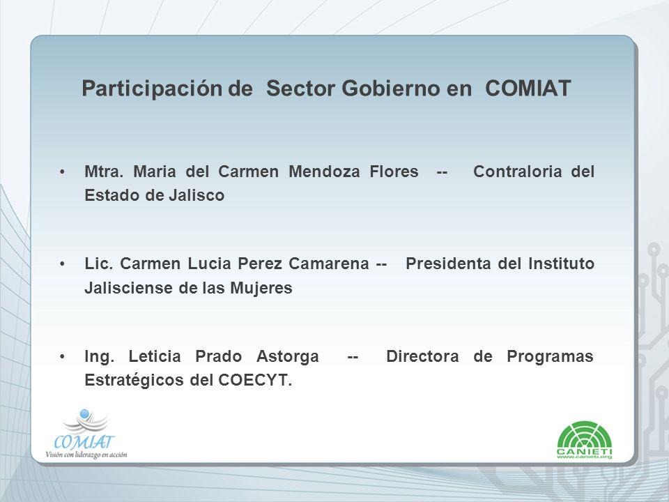 Participación de Sector Gobierno en COMIAT Mtra.