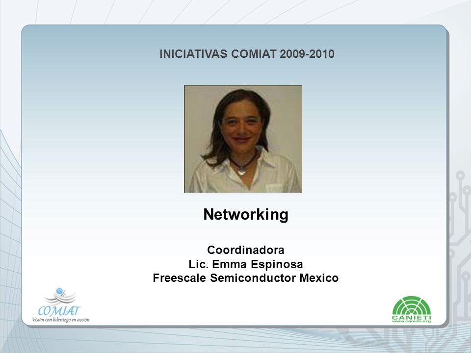 INICIATIVAS COMIAT 2009-2010 Networking Coordinadora Lic.
