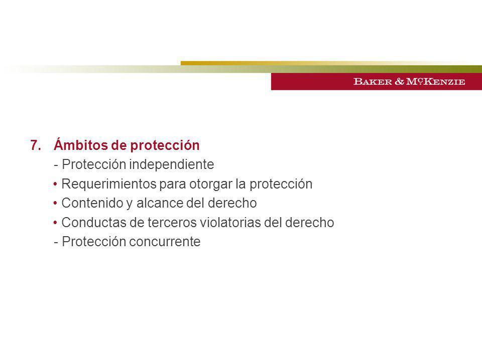 7.Ámbitos de protección - Protección independiente Requerimientos para otorgar la protección Contenido y alcance del derecho Conductas de terceros vio