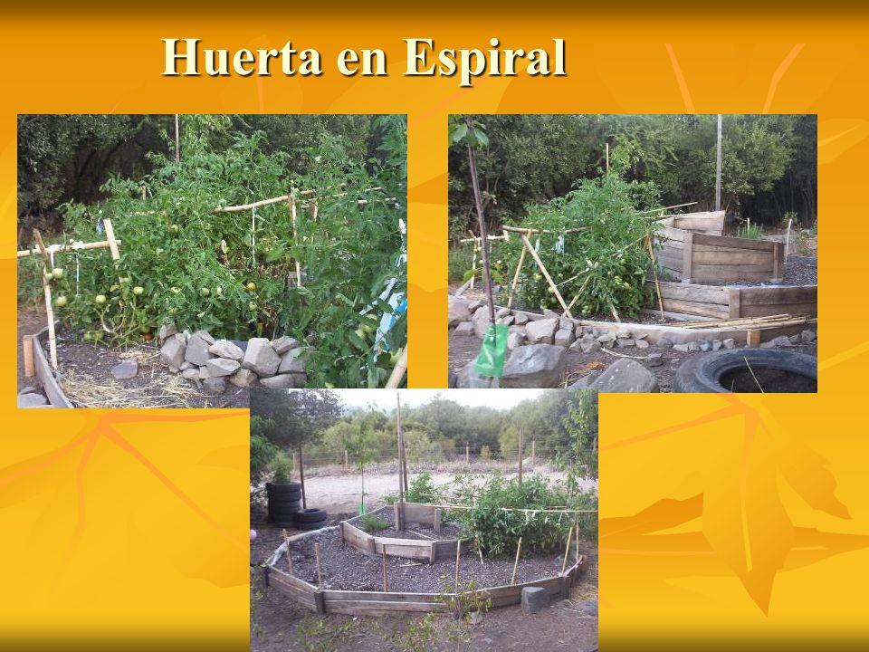 Huerta en Espiral