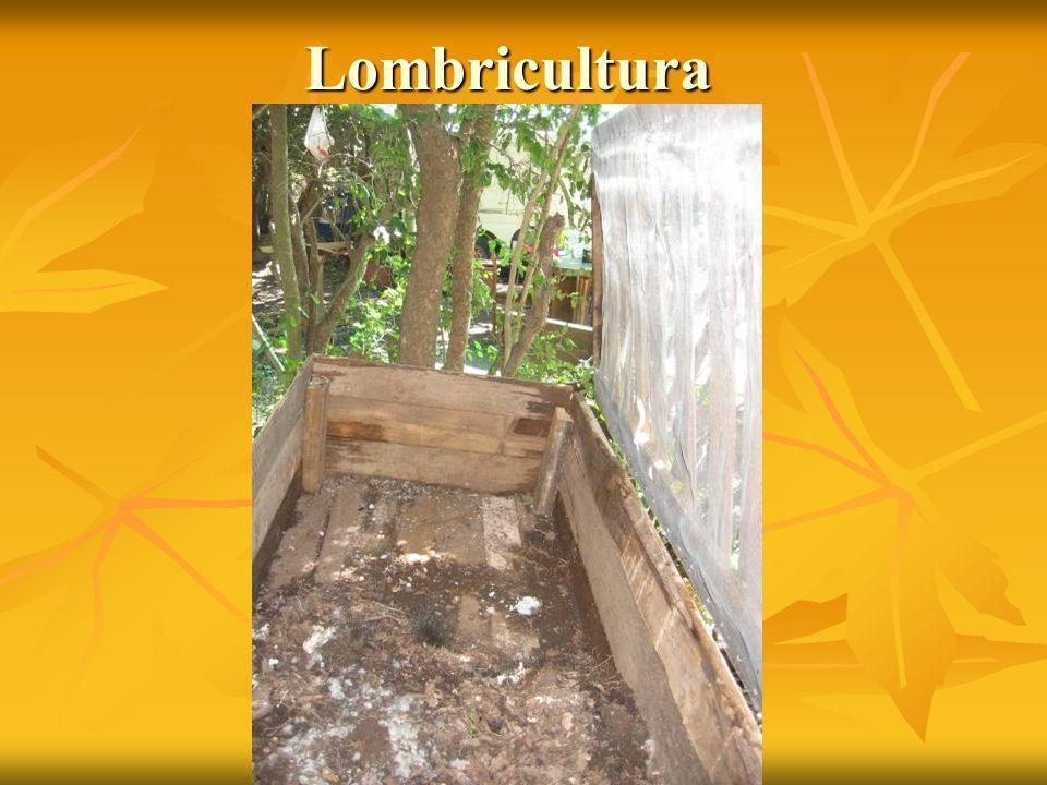 Lombricultura