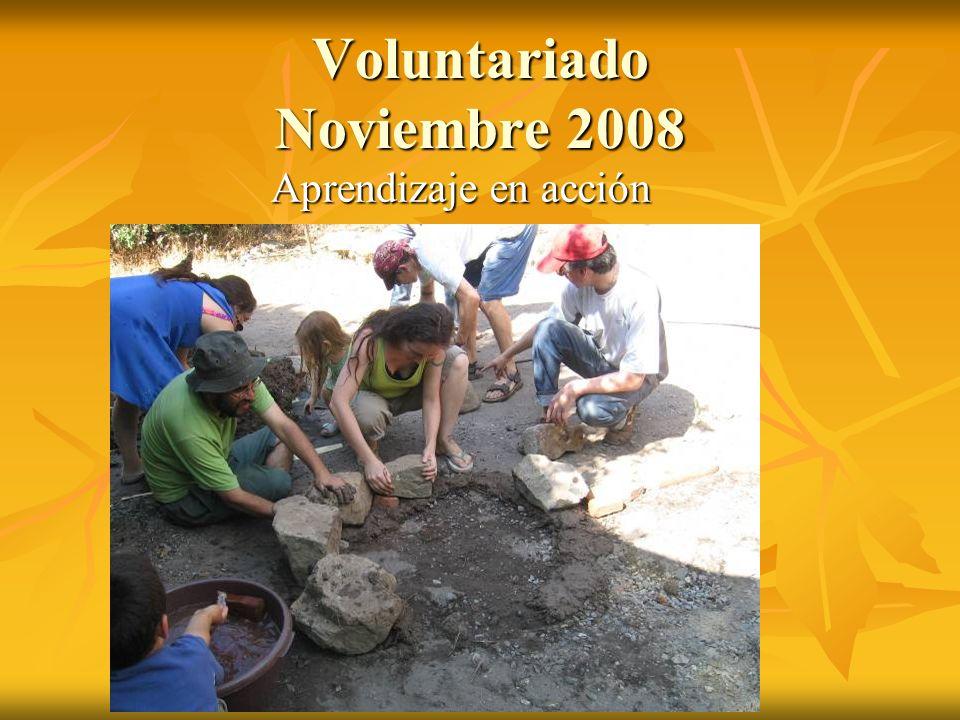 Voluntariado Noviembre 2008 Aprendizaje en acción