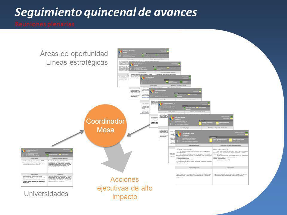 Seguimiento quincenal de avances Reuniones plenarias Áreas de oportunidad Líneas estratégicas Universidades Coordinador Mesa Acciones ejecutivas de al