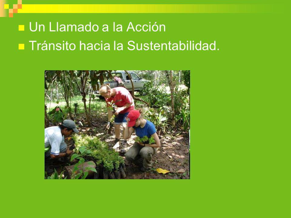 Un Llamado a la Acción Tránsito hacia la Sustentabilidad.