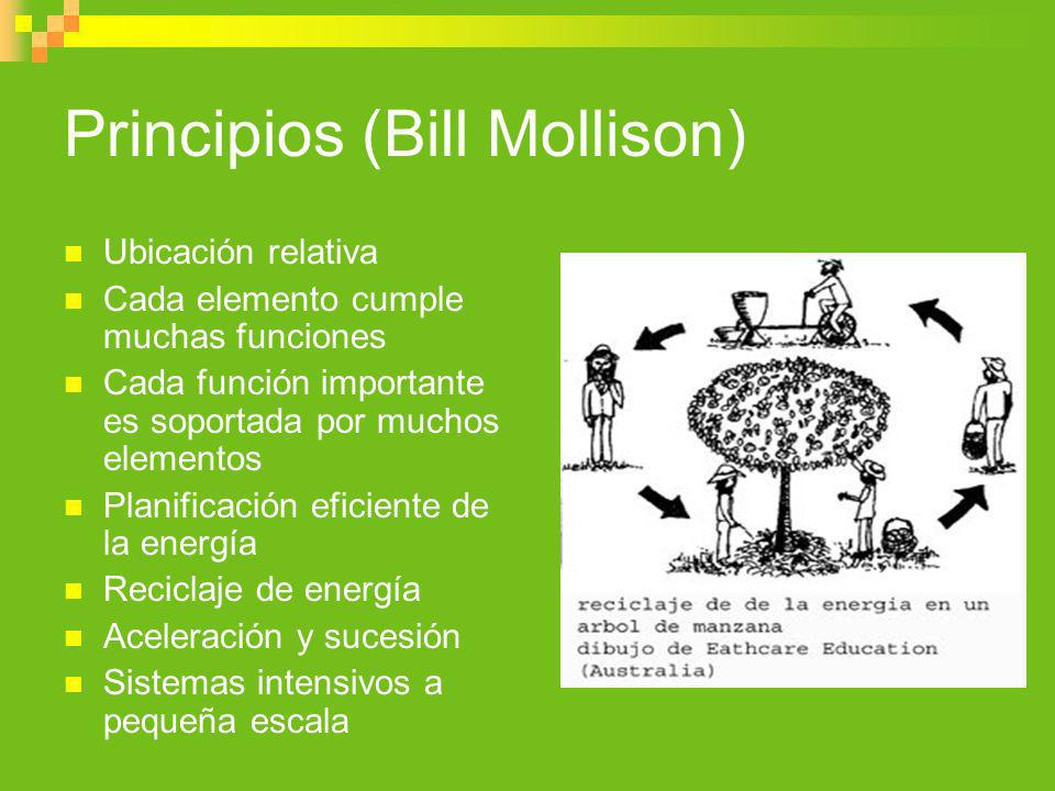 Principios (Bill Mollison) Ubicación relativa Cada elemento cumple muchas funciones Cada función importante es soportada por muchos elementos Planific
