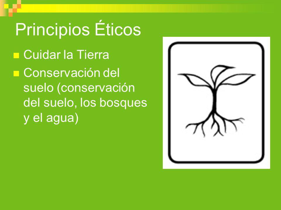 Principios Éticos Cuidar la Tierra Conservación del suelo (conservación del suelo, los bosques y el agua)