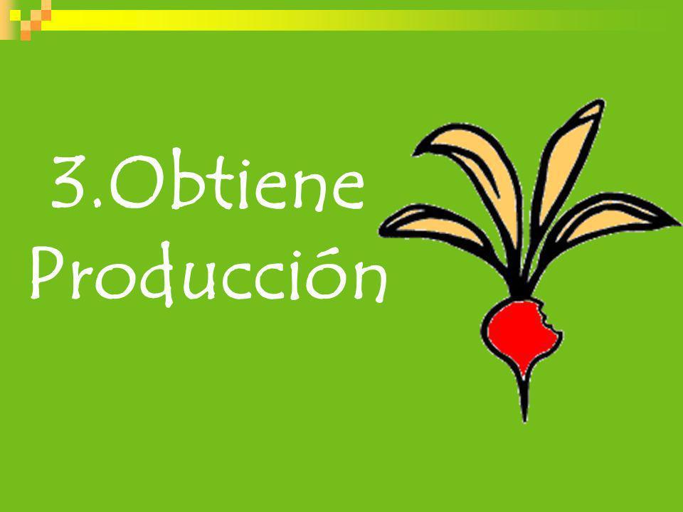 3.Obtiene Producción
