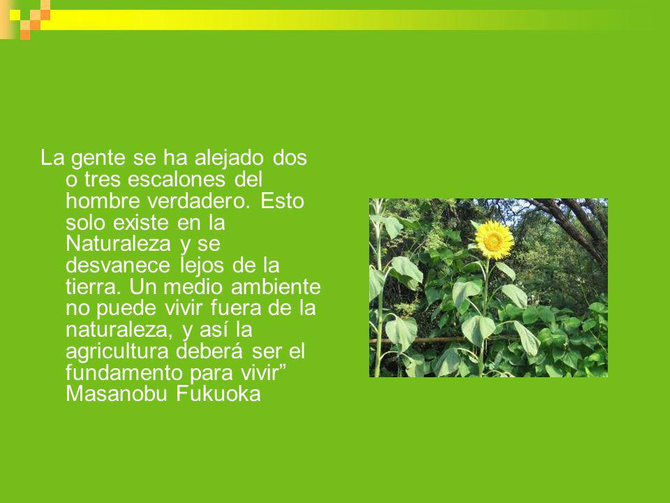 Permacultura Es una red de individuos y grupos que emplean soluciones que se basan en principios éticos y de diseño.