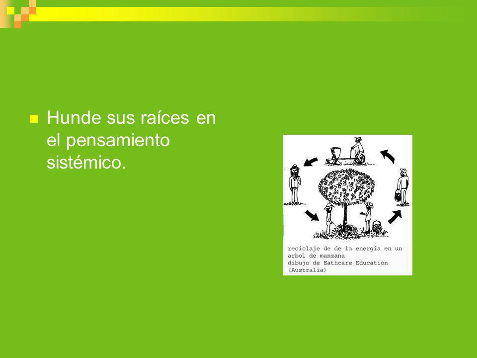 principios Mollisonianos de permacultura Los siguientes principios de diseño fueron desarrollados por Dr.