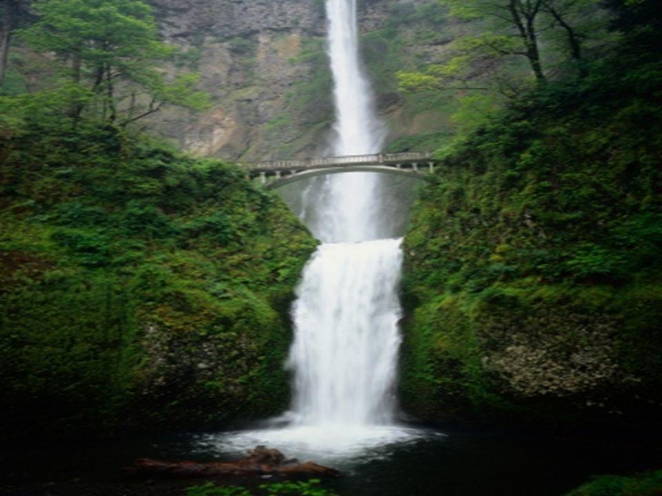 Es agua extraída de manantial y enriquecida con 80 milígramos de oxígeno natural con 80 milígramos de oxígeno natural