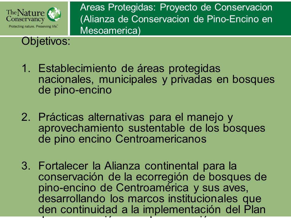 Areas Protegidas: Proyecto de Conservacion (Alianza de Conservacion de Pino-Encino en Mesoamerica) Objetivos: 1.Establecimiento de áreas protegidas na