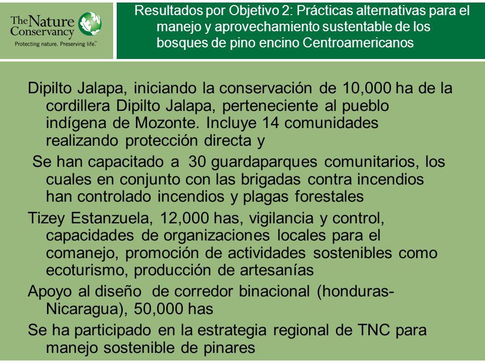 Resultados por Objetivo 2: Prácticas alternativas para el manejo y aprovechamiento sustentable de los bosques de pino encino Centroamericanos Dipilto