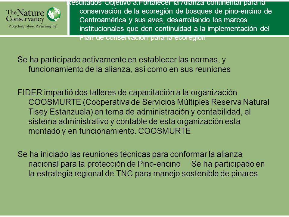 Resultados Objetivo 3:Fortalecer la Alianza continental para la conservación de la ecoregión de bosques de pino-encino de Centroamérica y sus aves, de