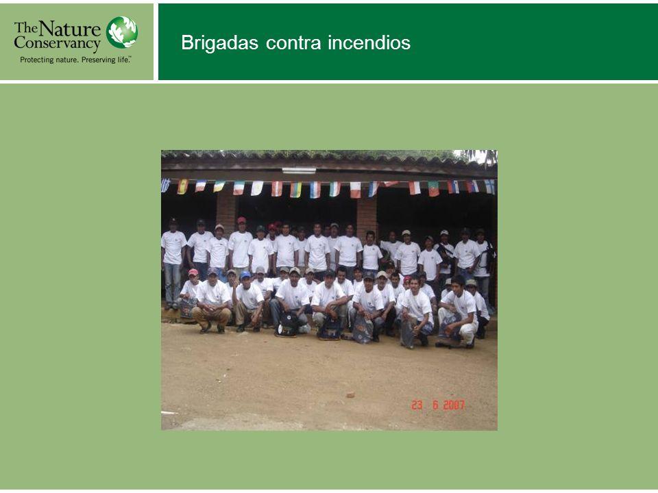 Brigadas contra incendios