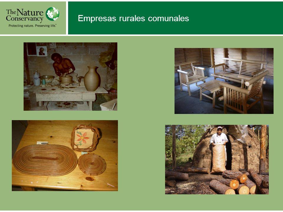 Empresas rurales comunales