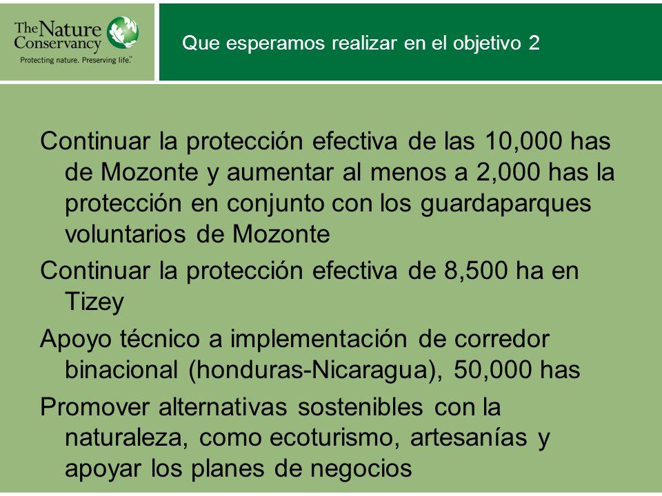 Que esperamos realizar en el objetivo 2 Continuar la protección efectiva de las 10,000 has de Mozonte y aumentar al menos a 2,000 has la protección en