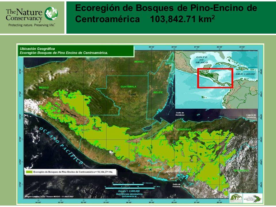 Ecoregión de Bosques de Pino-Encino de Centroamérica 103,842.71 km 2